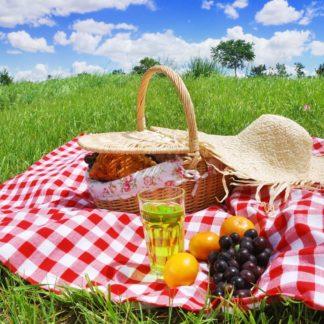 Отдых и пикник