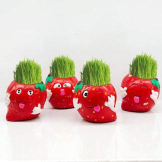 Травянчики, эколюбчики