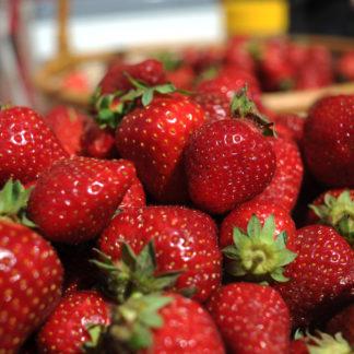 Клубника, земляника и прочие ягоды